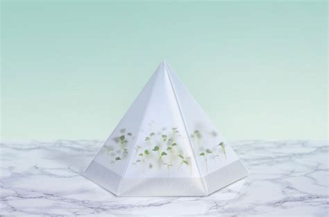 microgarden growing kit by tomorrow machine yellowtrace