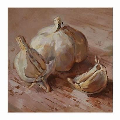 Garlic Still Heerden Van Gerbrand