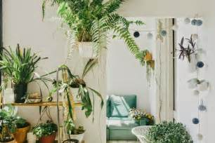 home interior plants moon to moon the home of andrew trotter and mari luz vidal