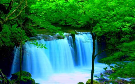 Wallpaper For Desktop by Forest River Falls Desktop Background Wallpaper 2560x1600