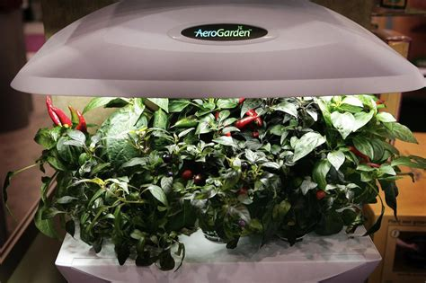 Indoor Garden Kits For Any Herb Lover