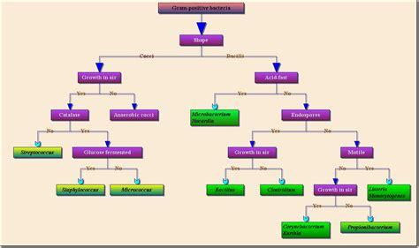 professional flowchart activex control ocx control