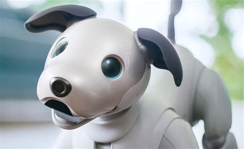 Sony Aibo Intelligent Dog Robot Pet » Gadget Flow