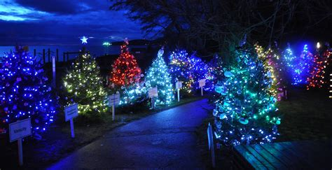 forest city christmas lights dundarave festival of lights offers biggest outdoor