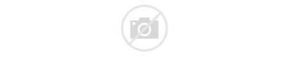 Rifle Laminate Youth Crickett 22lr Gun