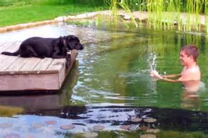 Natural Pond Swimming Pool