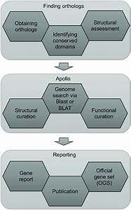 Annotation Workflow Describing Various Steps In Manual