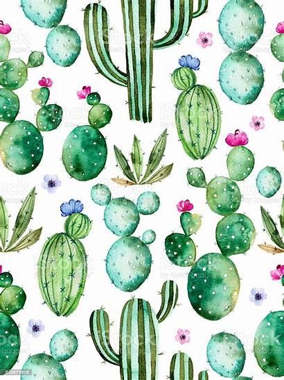 Cactus Watercolor Pattern Seamless Plants Flower Arizona