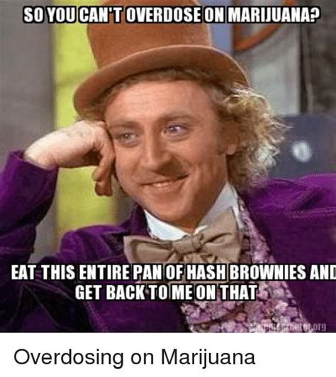 Marijuana Overdose Meme - so you overdose on marijuana eat this entire pan of hash brownies and get back to me on that