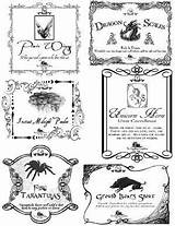 Labels Potion Potter Harry Apothecary Potions Halloween Printable Bottle Unicorn Label Jars Template Wand Clip Horn Via Google Signs Stuff sketch template