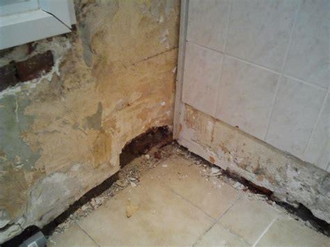 decoller du crepis interieur gros trous dans mur int 233 rieur briques
