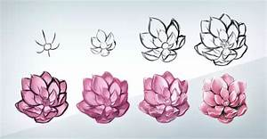 How to draw a realistic flower (step-by-step)