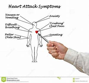Heart Attack Symptoms Stock Image  Image Of Body