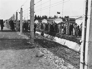 Survivors Congregate Next To The Barbed Wire Fence