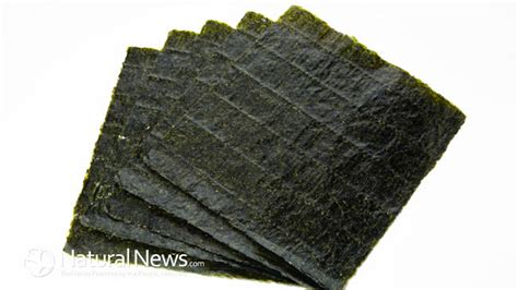 health benefits  nori  seaweed  wraps sushi