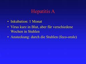 PPT - HEPATITE FULMINANTE PowerPoint Presentation - ID:364453