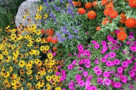 flowers by season in colorado springs timberline