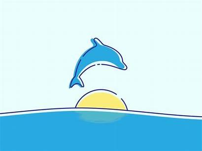 Dolphin Animation Twelve Arcs Move Styles Down