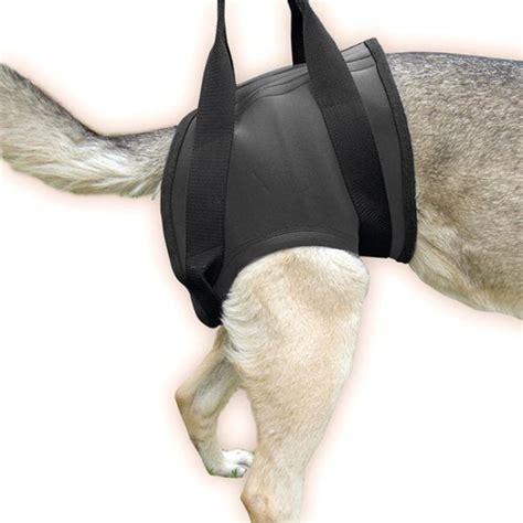 gehhilfe geschirr fuer hunde julius  hinten