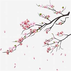 Branches Flowers And Trees Plant Pink Cherry Blossoms