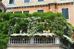 Sichtschutz Balkon Pflanzen Winterhart : balkon ideen 2018 blog f r deine inspiration zur balkongestaltung ~ Orissabook.com Haus und Dekorationen