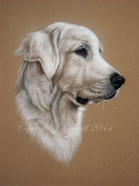 Pastel Pet Portraits Golden Retriever