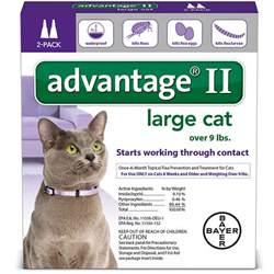 advantage 2 for cats advantage ii for cats entirelypets