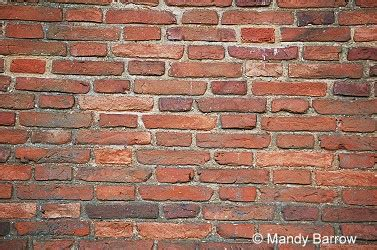types  brick bond