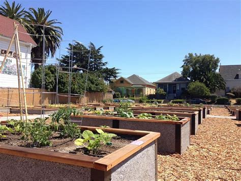Community Garden Bed Kits For Non-profits, Churches