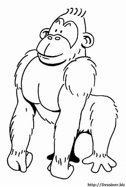 Gorilla Animals Coloring Printable Strong