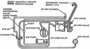 Buick 231 V6 Vacuum Diagram