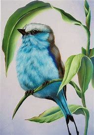 best colorful drawings ideas and images on bing find what you ll