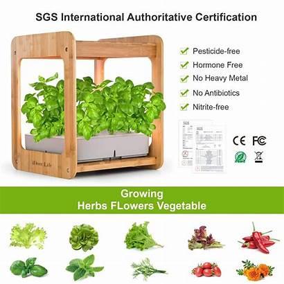 Indoor Grow Plant Growing Kit Gardening Hydroponics