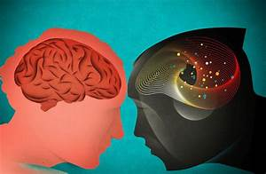 Should Artificial Intelligence Copy the Human Brain? - WSJ