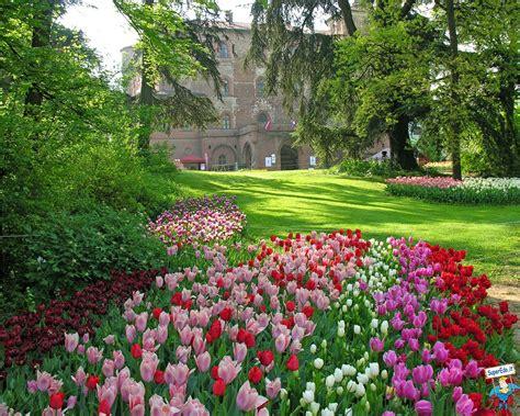printemps si e social image printemps images en haute définition hd