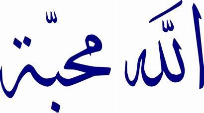 Arabic Text Writing Letter Alphabet Fonts Font