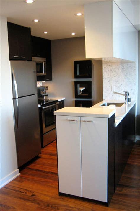 small downtown condo modern kitchen toronto