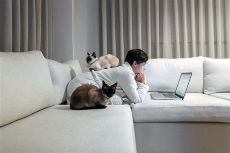 Learn How To Stay Focused When Working From Home