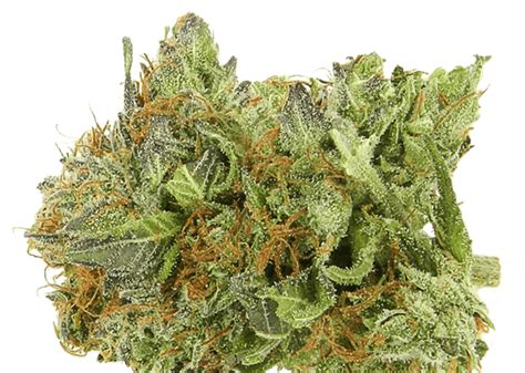 Effortlessly Buy Weed Online In Canada From A Reputable