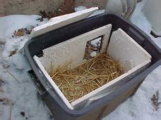 feral cat shelters for winter neighborhood cats how to tnr feral cat winter shelter