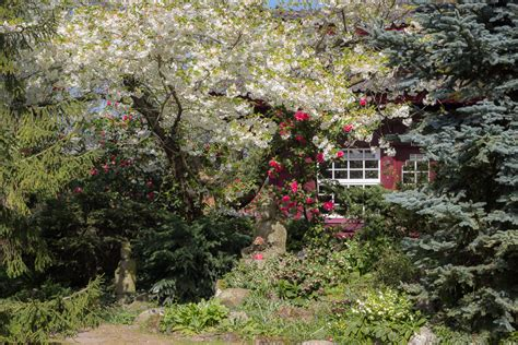 Japanischer Garten Bäume by Japanischer Garten Leverkusen Neue Motive Viele Kontraste