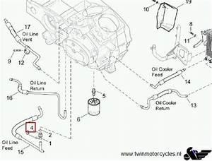Buell Xb12s Wiring Diagram