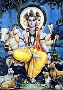 19 best images about Dattatreya on Pinterest