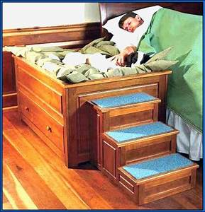 elevated dog bed with stairs rv remodel living With elevated dog bed with stairs