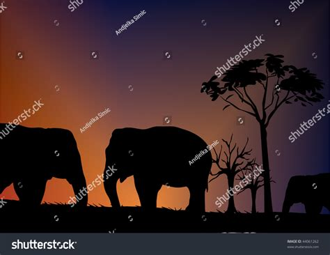 elephant silhouette front elephant silhouette front of sky illustration 44061262