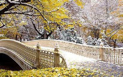 Central Park Fanpop Bridge Nyc Covered Fall