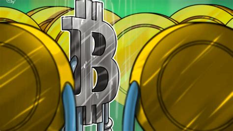 Altcoins rally as bulls pile into large-cap tokens and ...