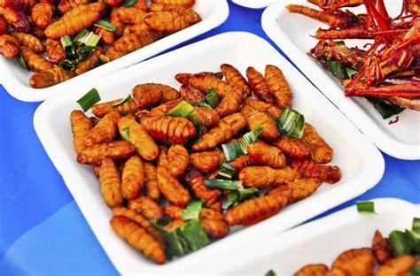 insectes cuisine manger des insectes c 39 est goût