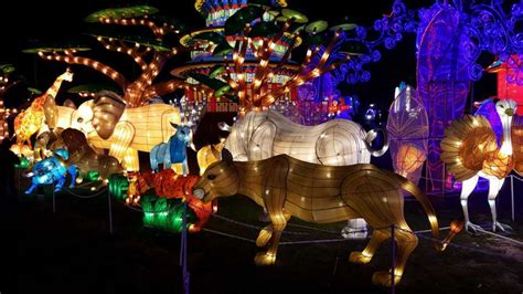 festival of lights houston family friendly last chance before the lights go out houston chronicle