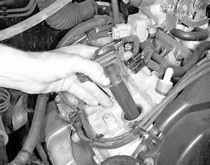 Toyota Gap : 2003 toyota tacoma 2 7 spark plug gap ~ Gottalentnigeria.com Avis de Voitures